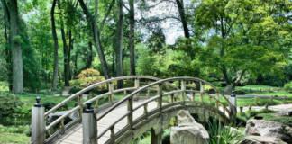 Aranżacja ogrodu - o czym warto pamiętać?